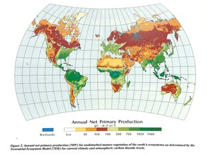 Figure from page 22 of the Ecosystems Center Annual Report 1992