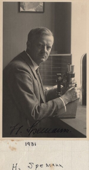 Spemann sitting with both hands placed on a microscope