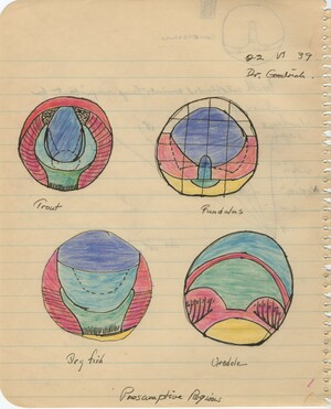 Notes from Hubert Goodrich's lecture. Trinkaus has drawn four colored diagrams of 'Presumptive Regions': Trout, Fundulus, Dog fish, and Urodele