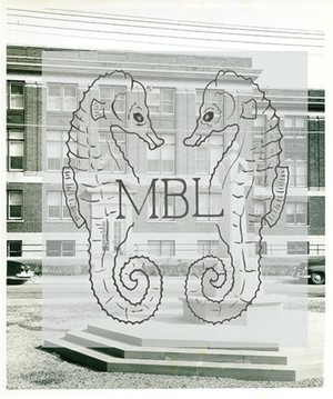 Old MBL logo superimposed over image of MBL building